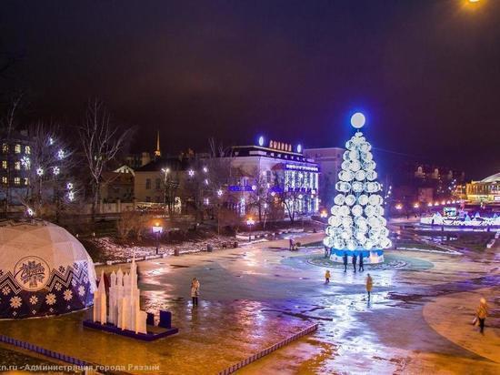 Благодаря всероссийской «Елке желаний» сбылись мечты юных рязанцев