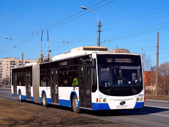 В Петербурге появятся новые троллейбусы-«гармошки» и электробусы