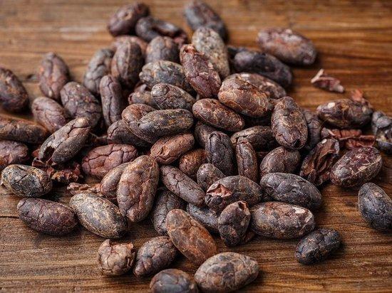 Названы полезные для здоровья человека свойства масло какао