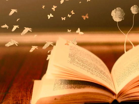 10 книг 2019 года, которые можно почитать длинными рождественскими вечерами