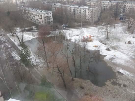 Озеро из фекалий образовалось после прорыва канализации в Сестрорецке