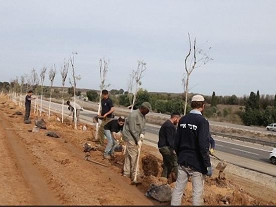 Началась четвертая стадия защитных посадок в окрестностях Газы