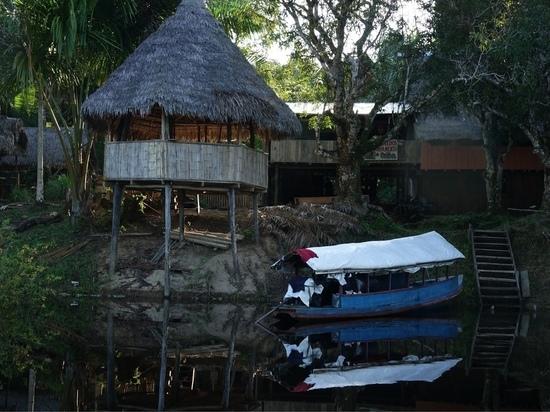 Дневник Нины Шацкой из джунглей Амазонки: «Видела розовых дельфинов!»