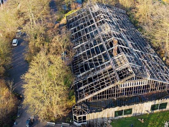 Германия. Мошенники наживаются на трагедии в зоопарке Крефельда