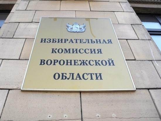 В воронежском облизбиркоме назначен новый член комиссии