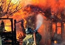 В Сафоновском районе в пожаре погибли 10 кур