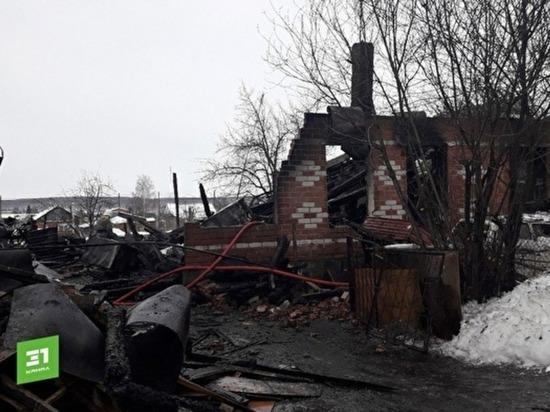 Под Челябинском сгорел дом перед проверкой органов опеки