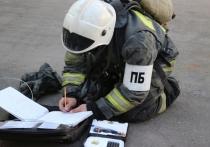 За сутки тульские пожарные боролись с пятью возгораниями, есть жертвы