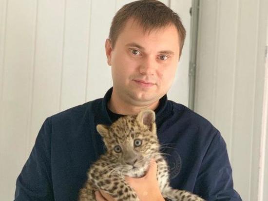 Специалисты не нашли следов возгорания в теле полигона ТБО в Полетаево