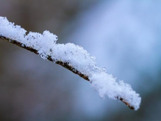 В Петербург пришла настоящая зима