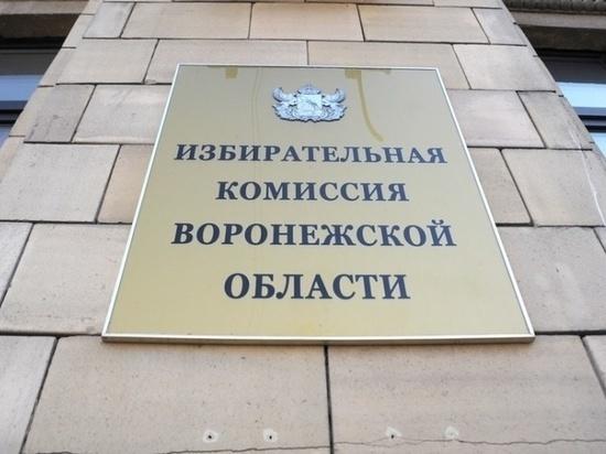 В воронежском облизбиркоме главного бухгалтера назначили зампредом