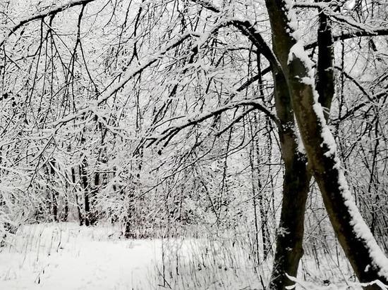 Какая погода ожидается в Смоленской области во вторник