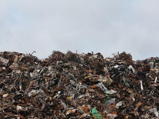 Воронежские власти потратят 500 млн рублей на раздельный сбор мусора