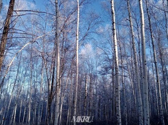 В Забайкалье ночью 14 января похолодает до 37° мороза, в Чите – до 34°