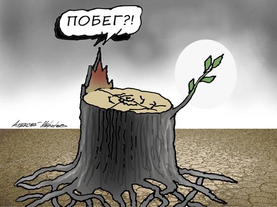 взять кредит без справки о доходах в белоруссии