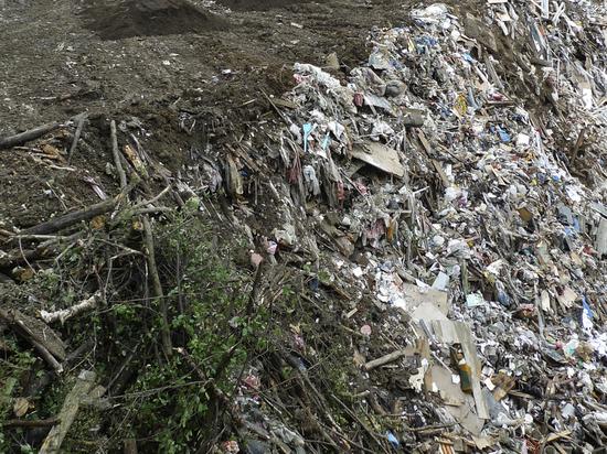 Подробности мусорного коллапса: Россия погружается в помойный хаос