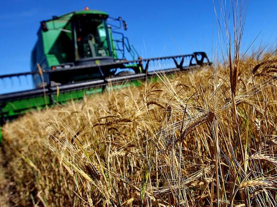 Сельхозпроизводители Серпухова могут получить дополнительные субсидии