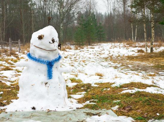 В Челябинске потеплеет до плюс пяти градусов на этой неделе