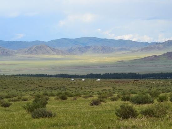 Незаконные 17 тысяч гектаров тайги вернули государству на Алтае