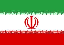 """Стало известно о первых задержаниях в связи с крушением самолета """"Международных авиалиний Украины"""" в Иране"""