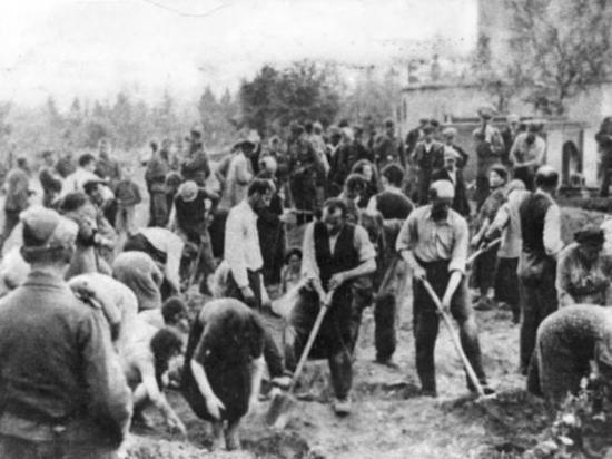 МИД Израиля жестко осудил прославление нацистов на Украине