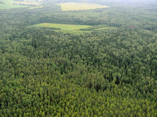 Доход от использования смоленских природных ресурсов побил рекорды