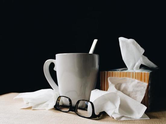 В Марий Эл зафиксирован первый случай гриппа
