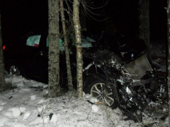 Трое архангелогородцев на машине влетели в дерево в Карелии