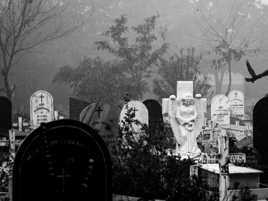Ученые предсказали гибель тысяч людей в США
