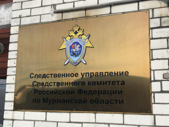 Мурманчанка понесёт наказание за избиение полицейского