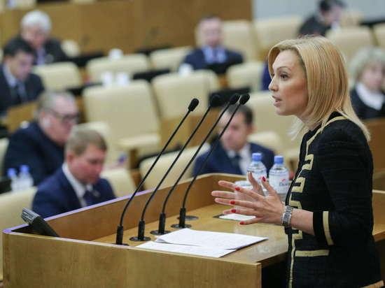 Вице-спикер Госдумы РФ обозначила приоритеты работы на год