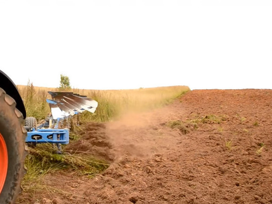Иностранные фермеры попросили Зеленского не закрывать для них рынок земли