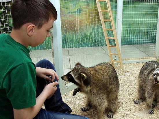 Руками не трогать: как «контактные зоопарки» Улан-Удэ соблюдают новые требования закона