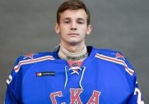 СКР завершил расследование убийства жены экс-хоккеиста Соколова, которое совершил их сын