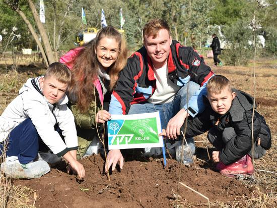 ЕНФ-ККЛ приглашает всех желающих принять участие в посадках деревьев