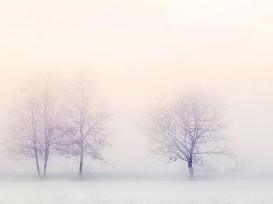 Снег с дождем прогнозируют калужские синоптики