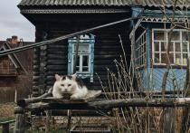 Унылые пейзажи российских городов, заброшенные деревни, промзоны, уходящие в никуда железнодорожные пути — все это способно вызвать не только мысли о депрессии, но и вдохновение