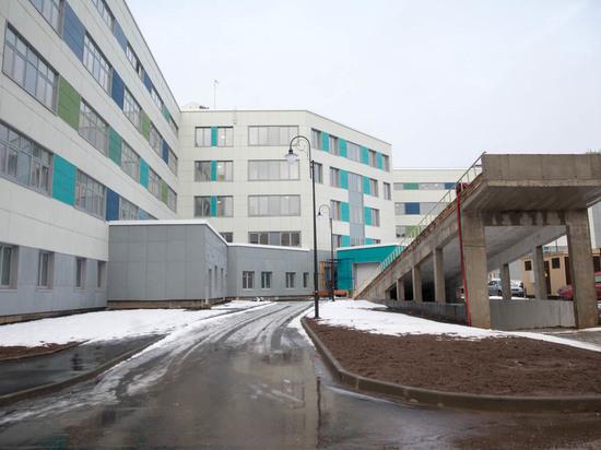 Чиновник: Псковский роддом обнесен забором из соображений безопасности