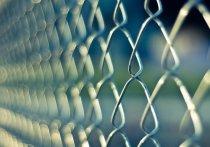 Более 60 нелегалов выдворили из Карелии в 2019 году