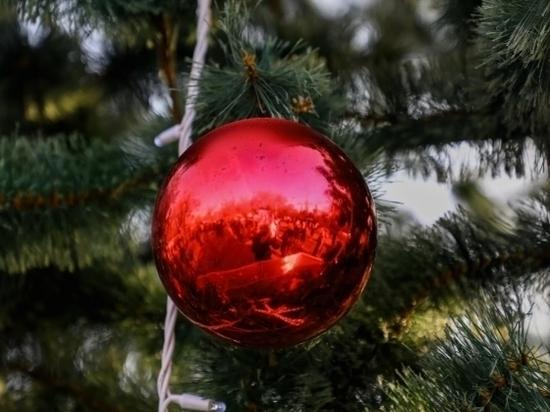 В Волгограде впервые состоялась елка для особенных детей