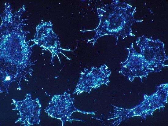 Ученые выяснили, как убивать раковые клетки с помощью ультразвука