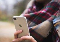 Таксист-мигрант из Петербурга отнял у московского продюсера iPhone и уехал