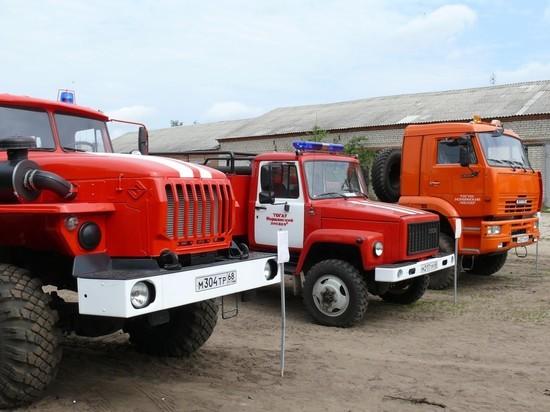 Как в Тамбовской области будут предотвращать лесные пожары