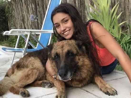 Собака изуродовала аргентинскую девочку во время фотосессии