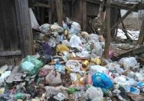Кто виноват в мусорных проблемах Костромы- власти или горожане