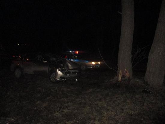 В Алексине водитель Volkswagen Polo врезался в дерево