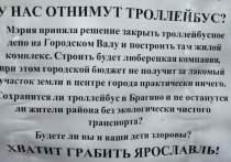 Ярославцы выйдут на митинг в защиту депо