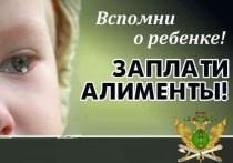 Жительница Ярославской области задолжала детям миллион