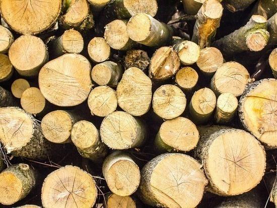 В России значительно выросли продажи дров
