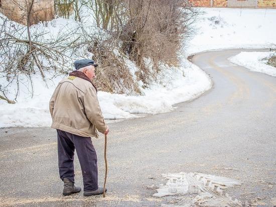 Глава ПФР рассказал о грядущем сокращении числа пенсионеров